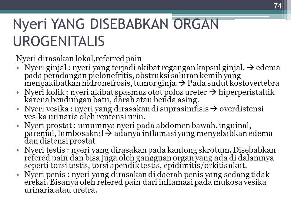 Nyeri YANG DISEBABKAN ORGAN UROGENITALIS Nyeri dirasakan lokal,referred pain Nyeri ginjal : nyeri yang terjadi akibat regangan kapsul ginjal.  edema