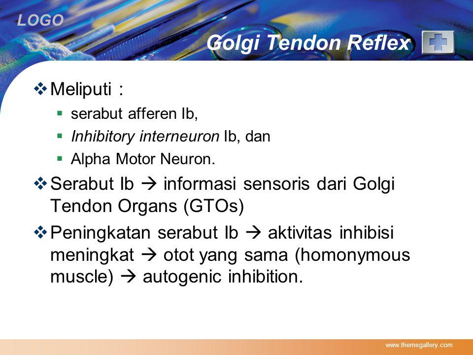 LOGO Golgi Tendon Reflex  Meliputi :  serabut afferen Ib,  Inhibitory interneuron Ib, dan  Alpha Motor Neuron.  Serabut Ib  informasi sensoris d