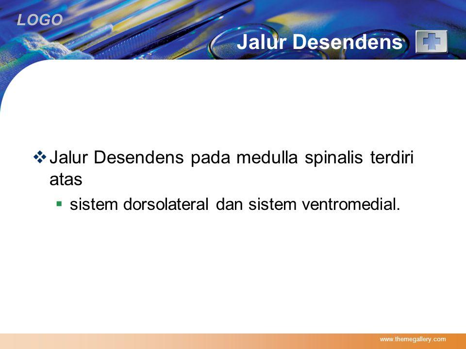 LOGO Jalur Desendens  Jalur Desendens pada medulla spinalis terdiri atas  sistem dorsolateral dan sistem ventromedial. www.themegallery.com