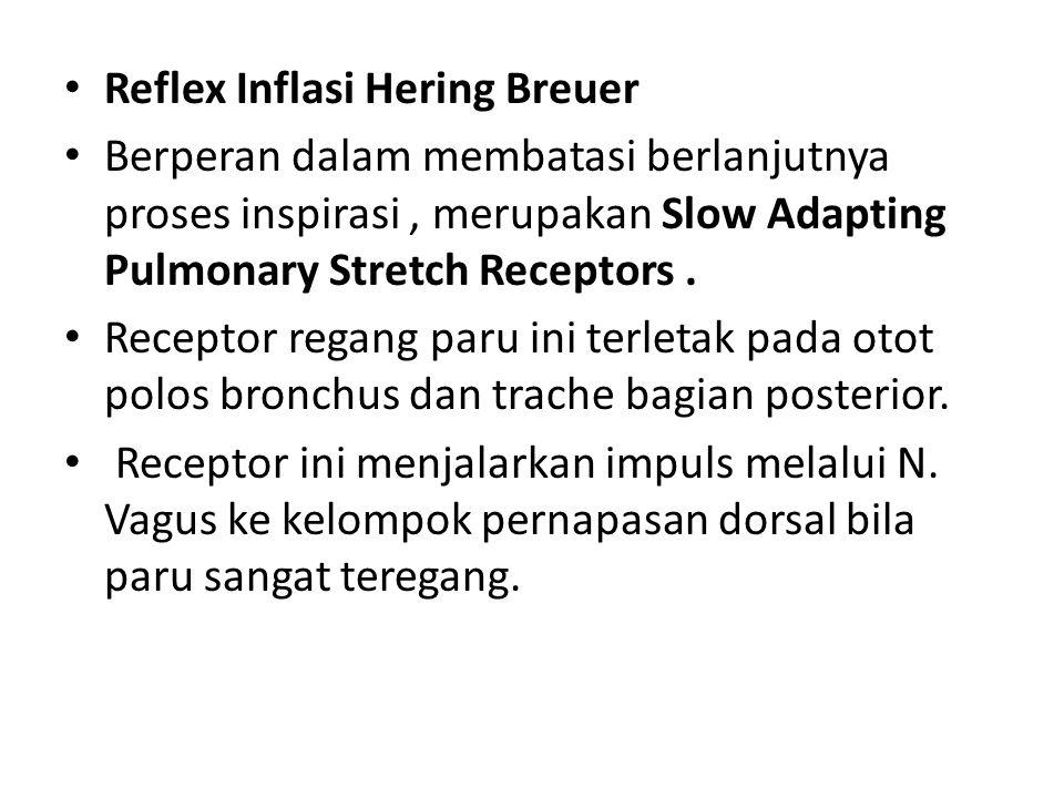 Reflex Inflasi Hering Breuer Berperan dalam membatasi berlanjutnya proses inspirasi, merupakan Slow Adapting Pulmonary Stretch Receptors. Receptor reg