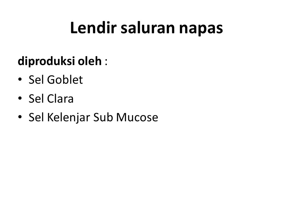Lendir saluran napas diproduksi oleh : Sel Goblet Sel Clara Sel Kelenjar Sub Mucose