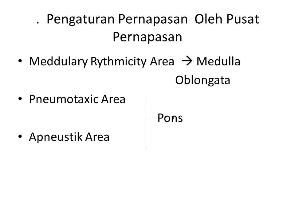 . Pengaturan Pernapasan Oleh Pusat Pernapasan Meddulary Rythmicity Area  Medulla Oblongata Pneumotaxic Area Pons Apneustik Area