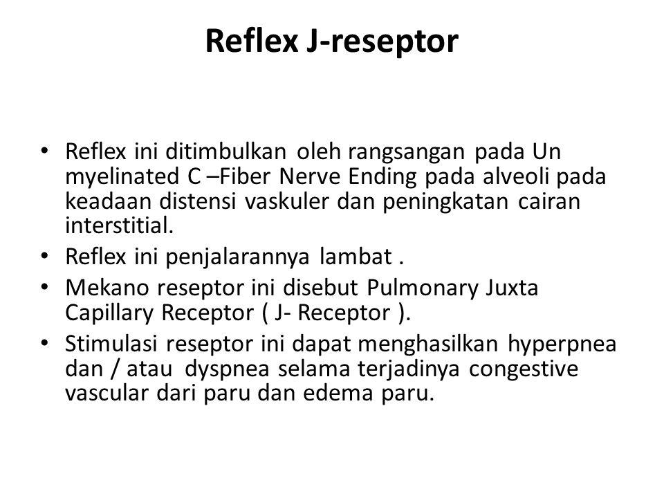 Reflex J-reseptor Reflex ini ditimbulkan oleh rangsangan pada Un myelinated C –Fiber Nerve Ending pada alveoli pada keadaan distensi vaskuler dan peni
