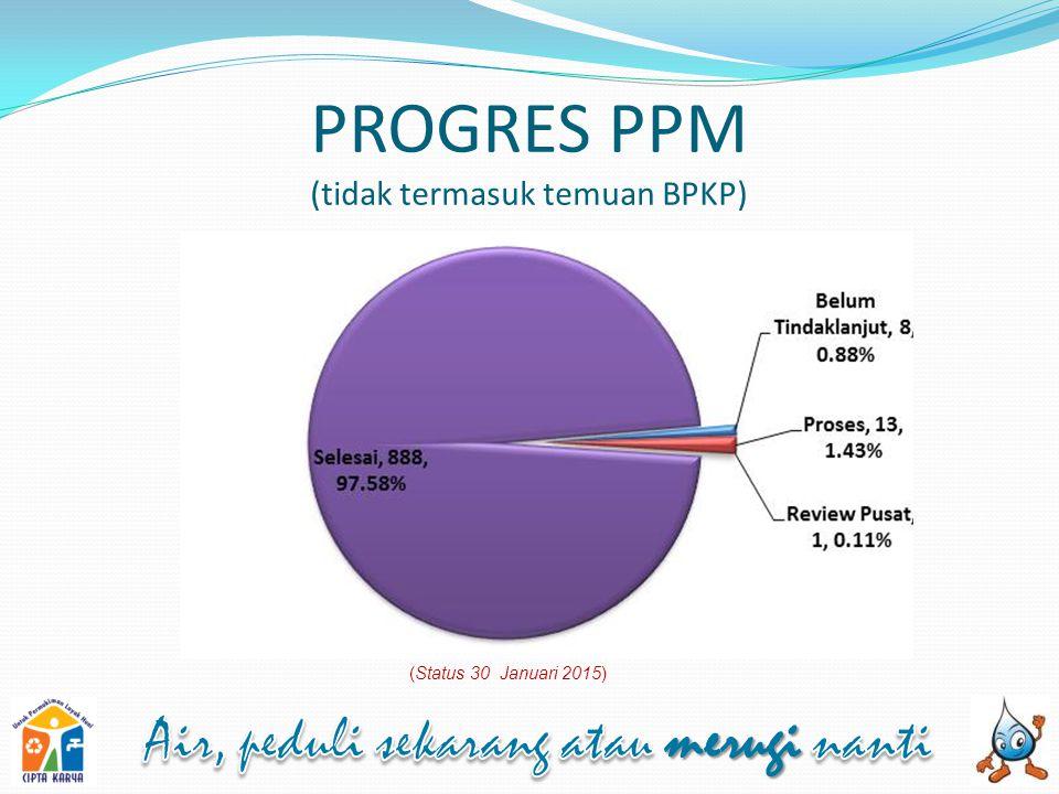 PROGRES PPM (tidak termasuk temuan BPKP) (Status 30 Januari 2015)