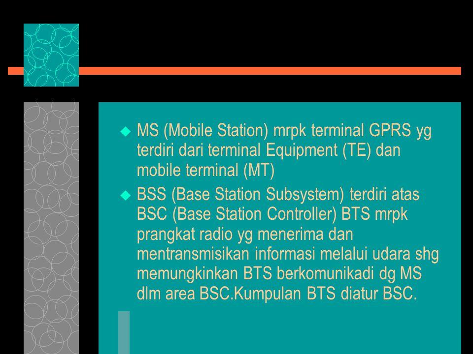  MS (Mobile Station) mrpk terminal GPRS yg terdiri dari terminal Equipment (TE) dan mobile terminal (MT)  BSS (Base Station Subsystem) terdiri atas BSC (Base Station Controller) BTS mrpk prangkat radio yg menerima dan mentransmisikan informasi melalui udara shg memungkinkan BTS berkomunikadi dg MS dlm area BSC.Kumpulan BTS diatur BSC.