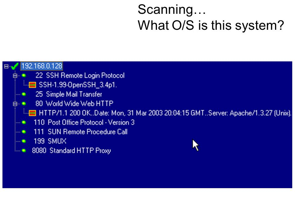 Scanning… What O/S is this system?
