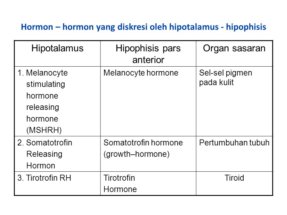 Hormon – hormon yang diskresi oleh hipotalamus - hipophisis HipotalamusHipophisis pars anterior Organ sasaran 1. Melanocyte stimulating hormone releas