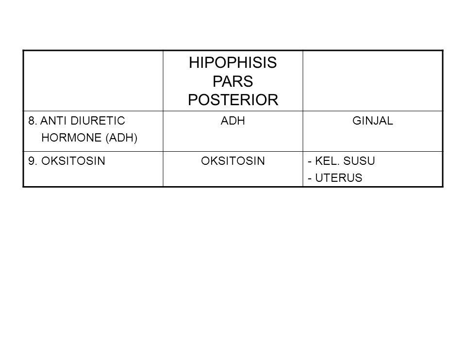 Hipophisis pars intermediate (bag.
