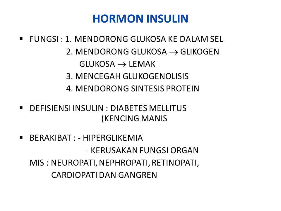 HORMON GLUKAGON FUNGSI : MENINGKATKAN KADAR GLUKOSA DARAH MELALUI : - GLUKOGENOLISIS - GLUKONEOGENESIS - LIPOLISIS DALAM KEADAAN TERTENTU ISTILAH – ISTILAH : - GLUKOLISIS : PEMECAHAN GLUKOSA  ATP - GLUKOGENOLISIS : PEMECAHAN GLIKOGEN MENJADI GLUKOSA - GLUKONEOGENESIS : PEMBENTUKAN GLUKOSA DARI NON KH