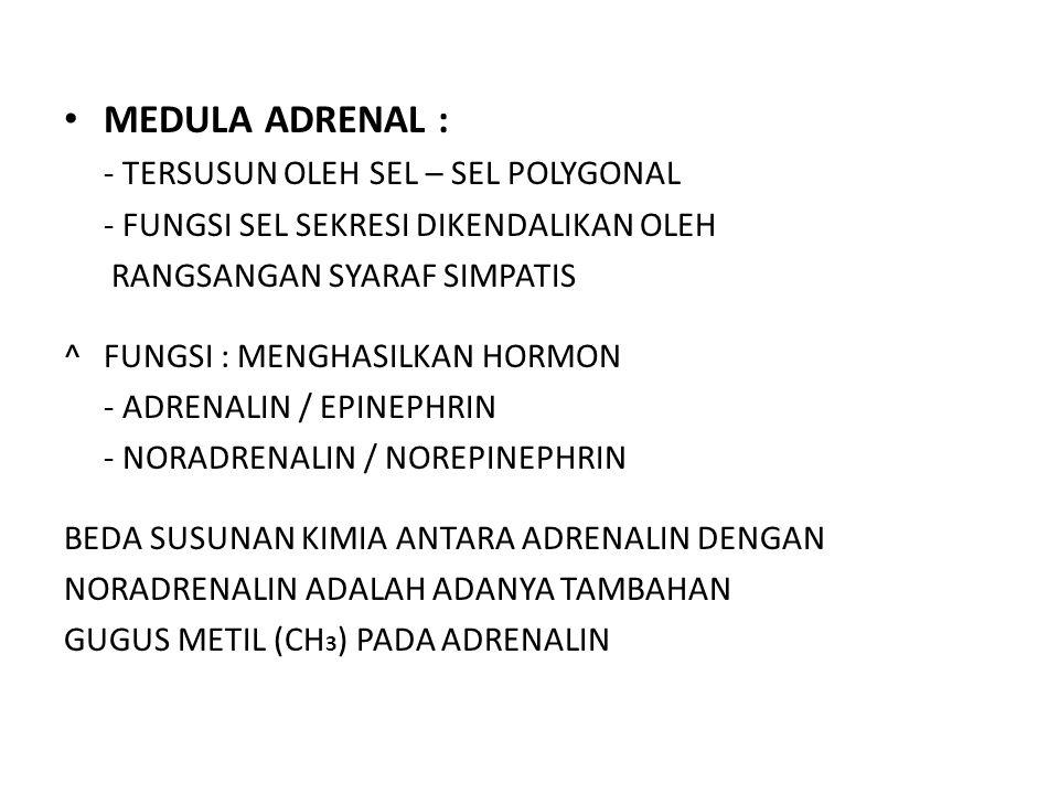 FUNGSI HORMON ADRENALIN / EPINEPHRIN : 1.DILATASI BRONCHIAL  PENDERITA ASMA 2.