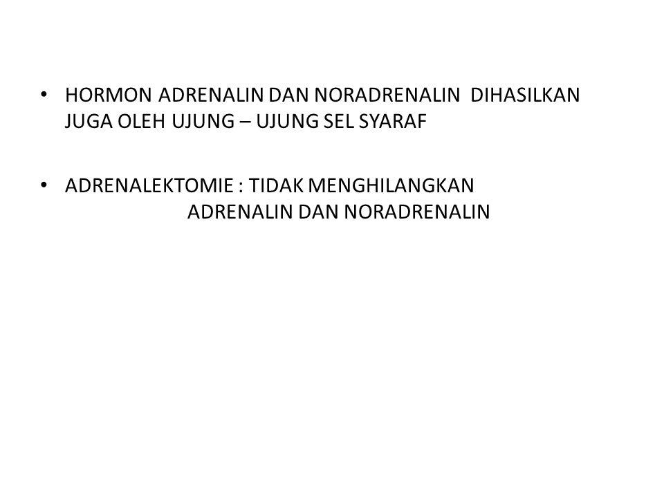 HORMON ADRENALIN DAN NORADRENALIN DIHASILKAN JUGA OLEH UJUNG – UJUNG SEL SYARAF ADRENALEKTOMIE : TIDAK MENGHILANGKAN ADRENALIN DAN NORADRENALIN