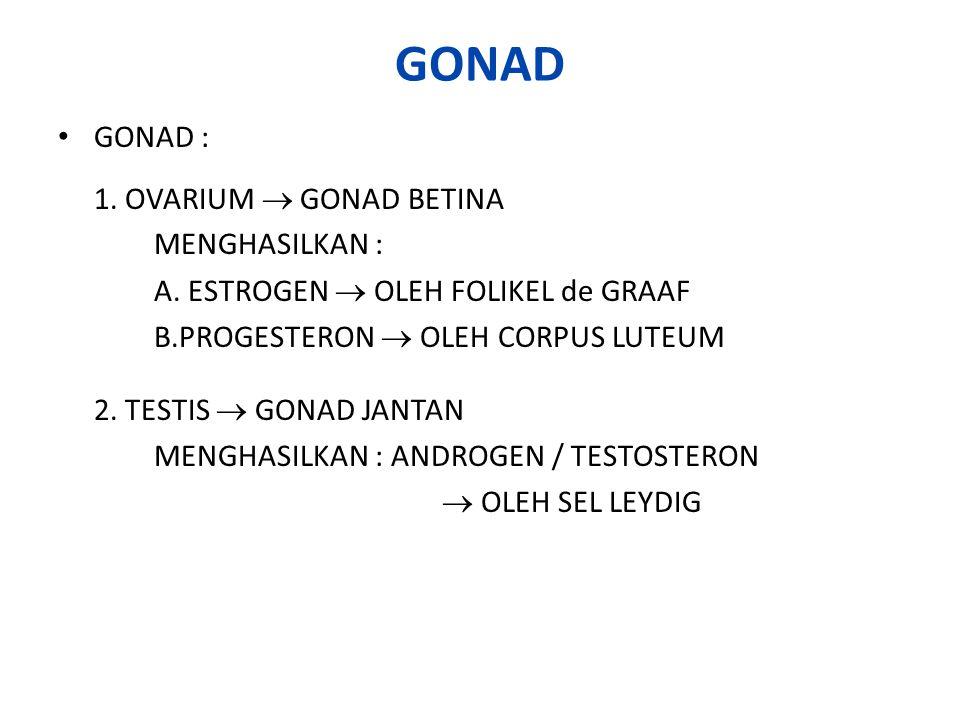 FUNGSI HORMON – HORMON GONAD : 1.BERPENGARUH TERHADAP PERILAKU 2.