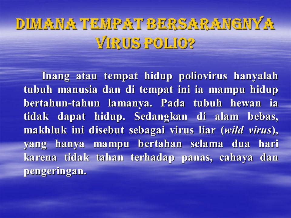 Apa yang menyebabkan negara yang sudah terbebas polio seperti Indonesia terkena kembali transmisi polio liar.