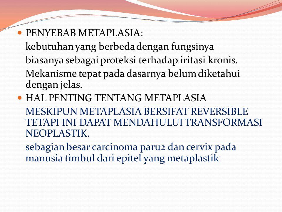 PENYEBAB METAPLASIA: kebutuhan yang berbeda dengan fungsinya biasanya sebagai proteksi terhadap iritasi kronis. Mekanisme tepat pada dasarnya belum di