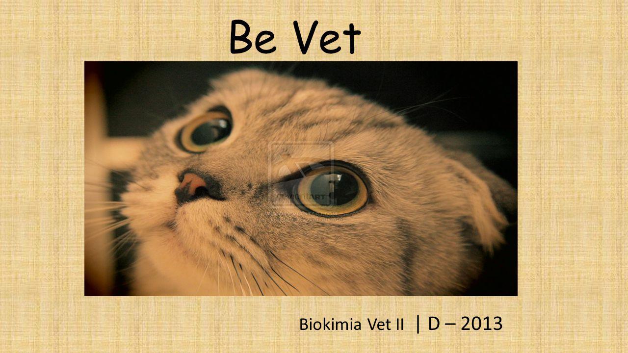 Be Vet Biokimia Vet II   D – 2013