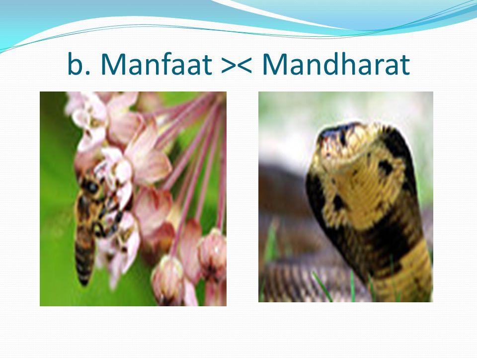 b. Manfaat >< Mandharat
