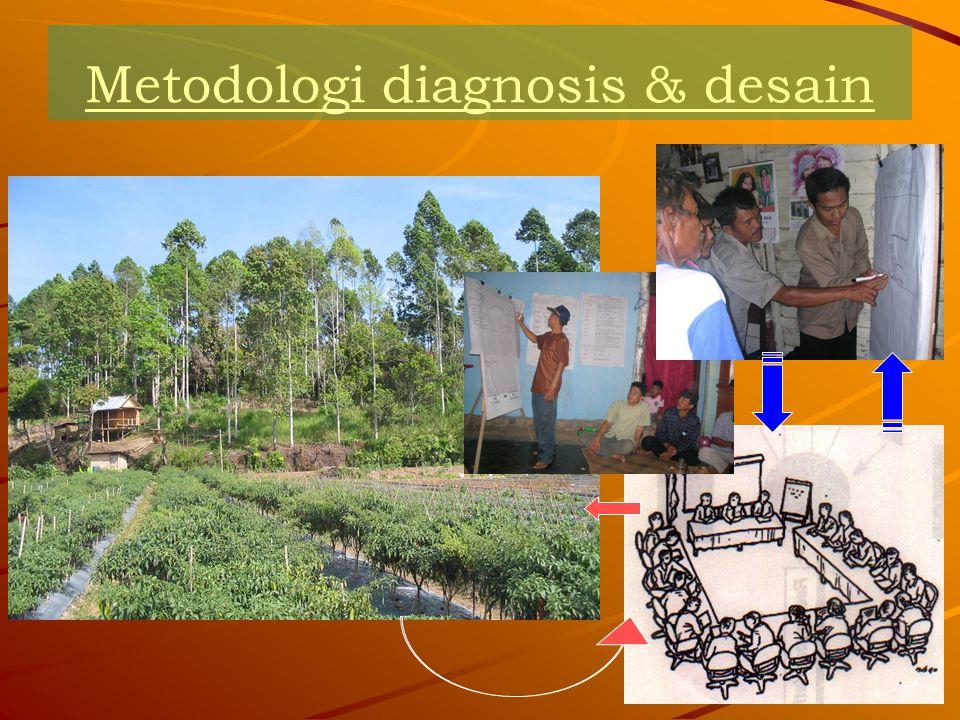 Apa itu D&D: D&D adalah sebuah metodologi untuk mendiagnosis masalah-masalah pengelolaan lahan dan mendesain solusi-solusi agroforestry (Konsepsi).