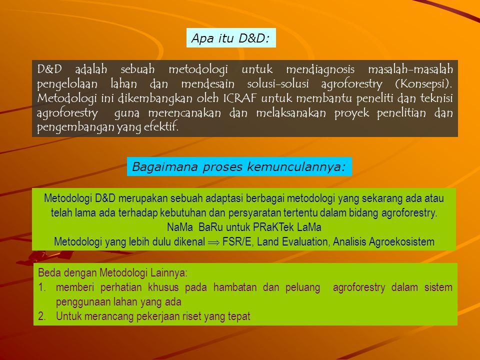 Apa itu D&D: D&D adalah sebuah metodologi untuk mendiagnosis masalah-masalah pengelolaan lahan dan mendesain solusi-solusi agroforestry (Konsepsi). Me