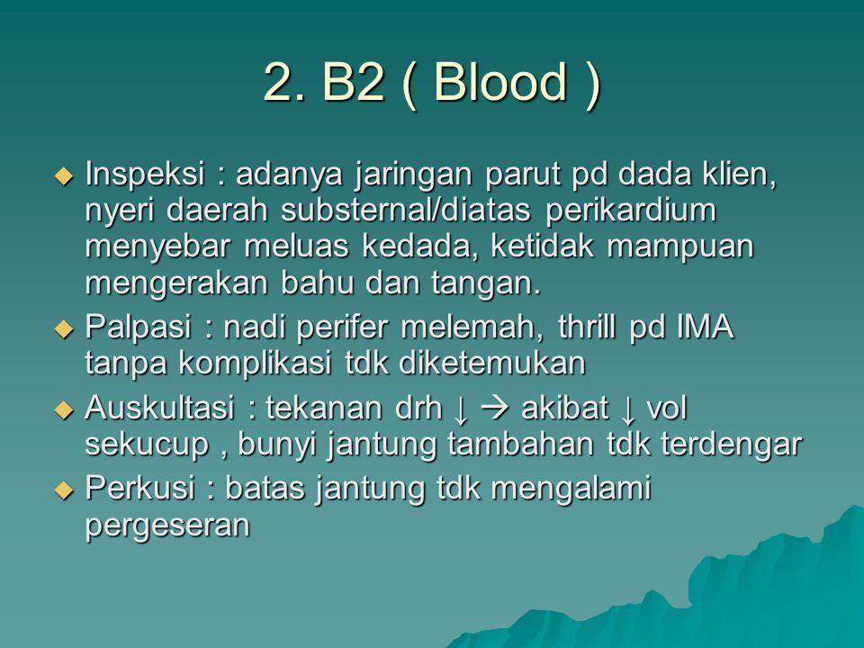 2. B2 ( Blood )  Inspeksi : adanya jaringan parut pd dada klien, nyeri daerah substernal/diatas perikardium menyebar meluas kedada, ketidak mampuan m