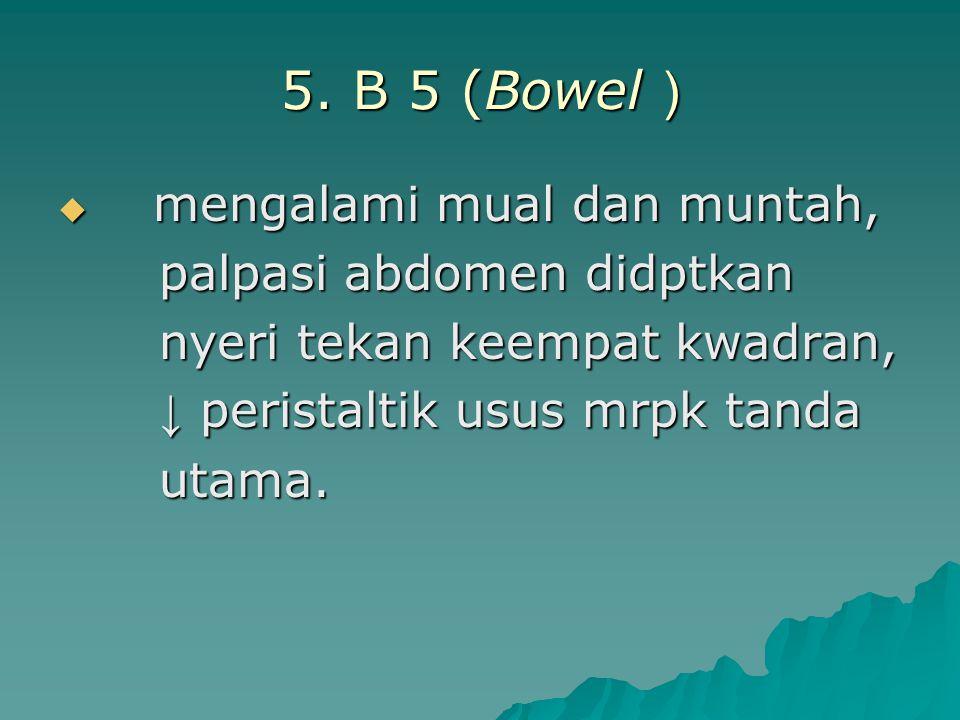 5. B 5 (Bowel )  mengalami mual dan muntah, palpasi abdomen didptkan palpasi abdomen didptkan nyeri tekan keempat kwadran, nyeri tekan keempat kwadra