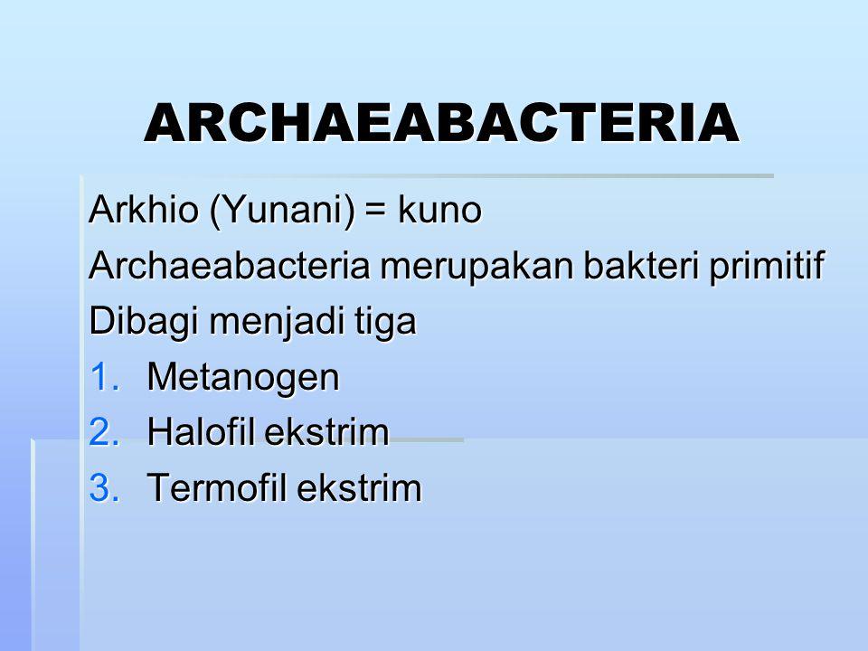 ARCHAEABACTERIA Arkhio (Yunani) = kuno Archaeabacteria merupakan bakteri primitif Dibagi menjadi tiga 1.Metanogen 2.Halofil ekstrim 3.Termofil ekstrim