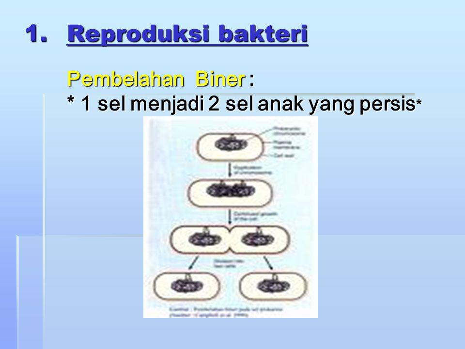 1.Reproduksi bakteri Pembelahan Biner : * 1 sel menjadi 2 sel anak yang persis *