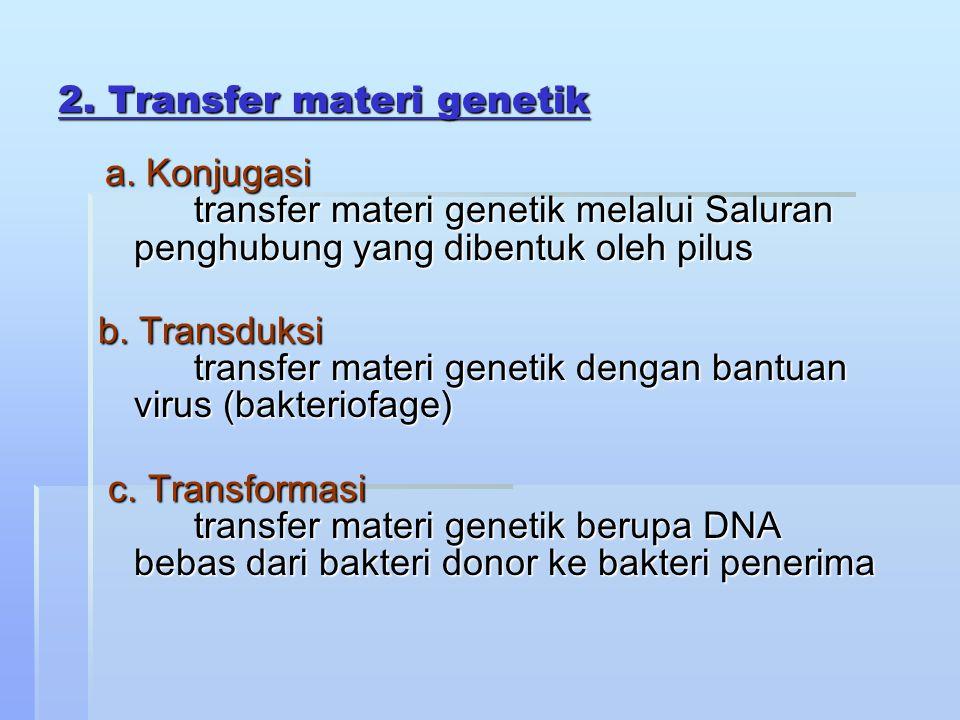 2. Transfer materi genetik a. Konjugasi transfer materi genetik melalui Saluran penghubung yang dibentuk oleh pilus a. Konjugasi transfer materi genet