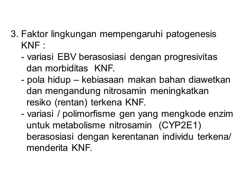 3. Faktor lingkungan mempengaruhi patogenesis KNF : - variasi EBV berasosiasi dengan progresivitas dan morbiditas KNF. - pola hidup – kebiasaan makan