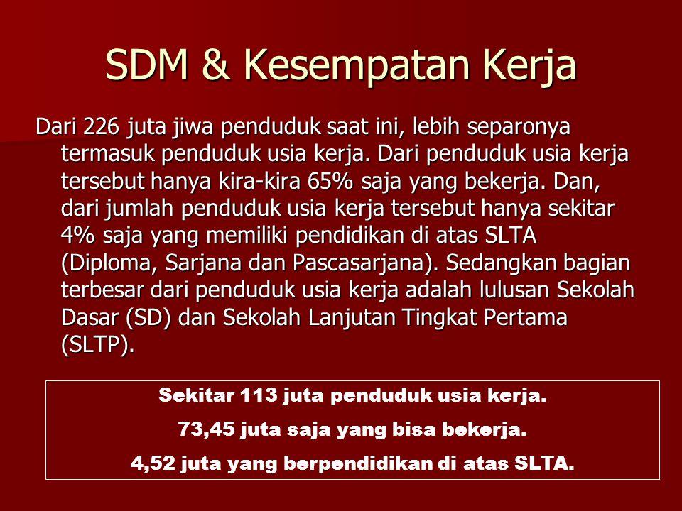 6 Kebijakan Pemerintah untuk Tingkatkan SDM (diatur dalam UU) 1.