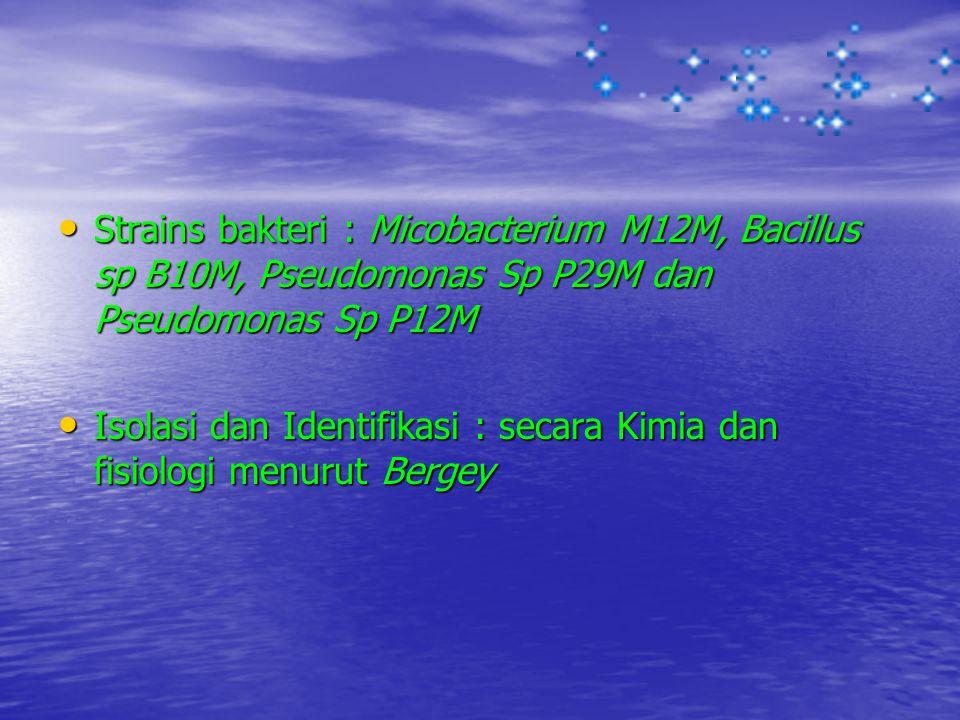 Strains bakteri : Micobacterium M12M, Bacillus sp B10M, Pseudomonas Sp P29M dan Pseudomonas Sp P12M Strains bakteri : Micobacterium M12M, Bacillus sp
