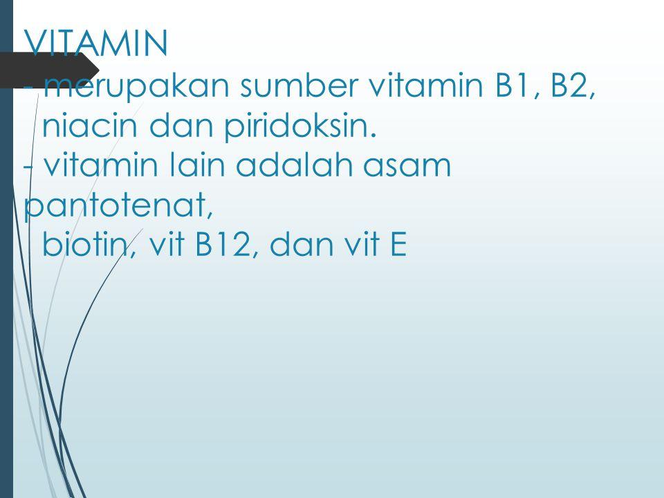 VITAMIN - merupakan sumber vitamin B1, B2, niacin dan piridoksin. - vitamin lain adalah asam pantotenat, biotin, vit B12, dan vit E