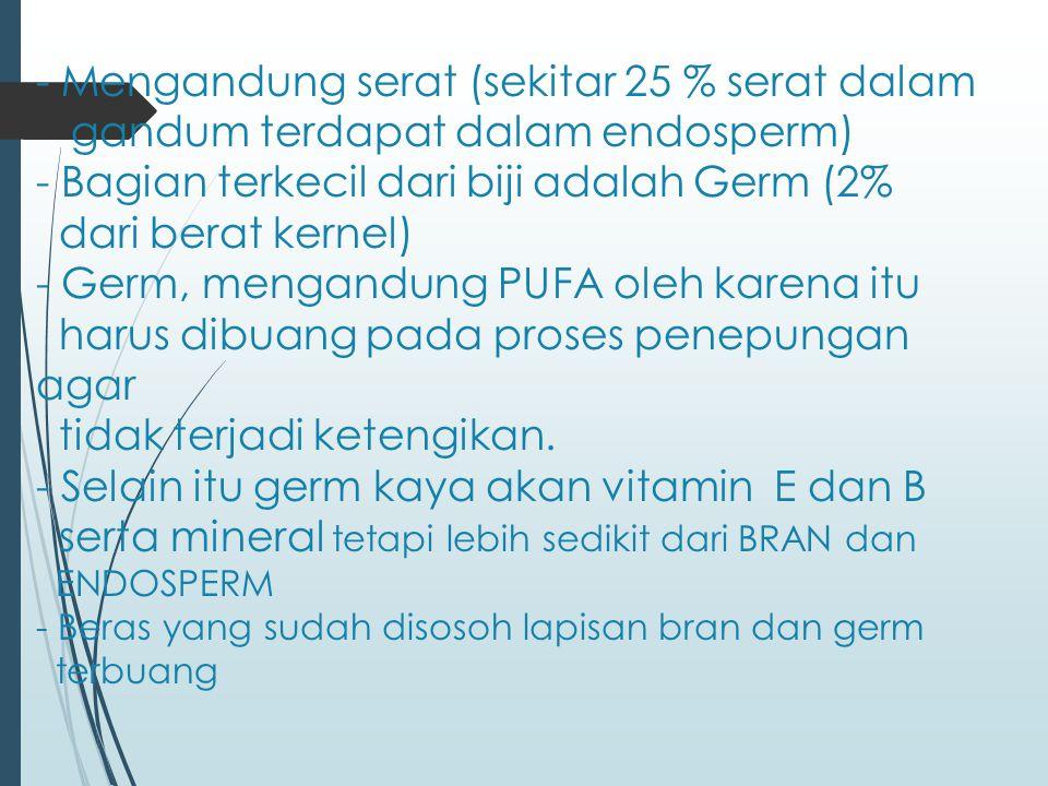 - Mengandung serat (sekitar 25 % serat dalam gandum terdapat dalam endosperm) - Bagian terkecil dari biji adalah Germ (2% dari berat kernel) - Germ, m