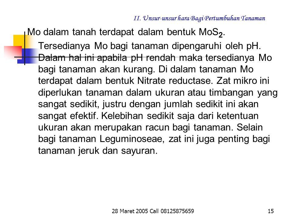 28 Maret 2005 Call 0812587565914 II.