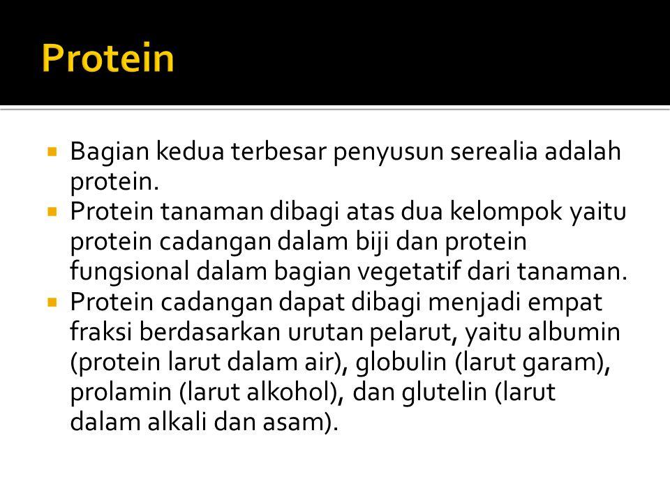  Bagian kedua terbesar penyusun serealia adalah protein.  Protein tanaman dibagi atas dua kelompok yaitu protein cadangan dalam biji dan protein fun