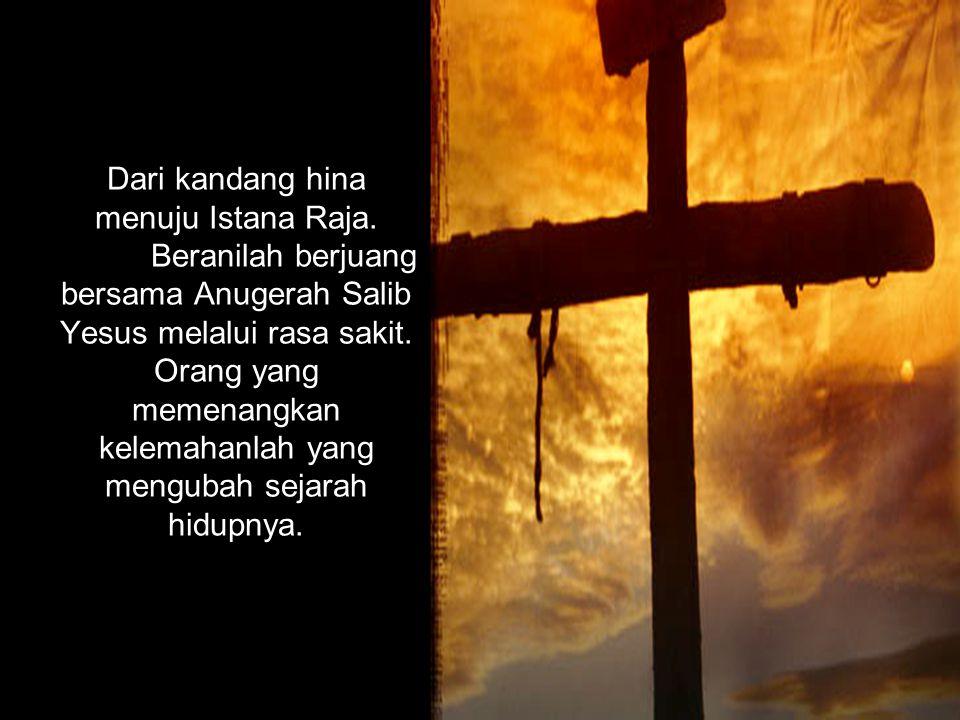 Dari kandang hina menuju Istana Raja. Beranilah berjuang bersama Anugerah Salib Yesus melalui rasa sakit. Orang yang memenangkan kelemahanlah yang men