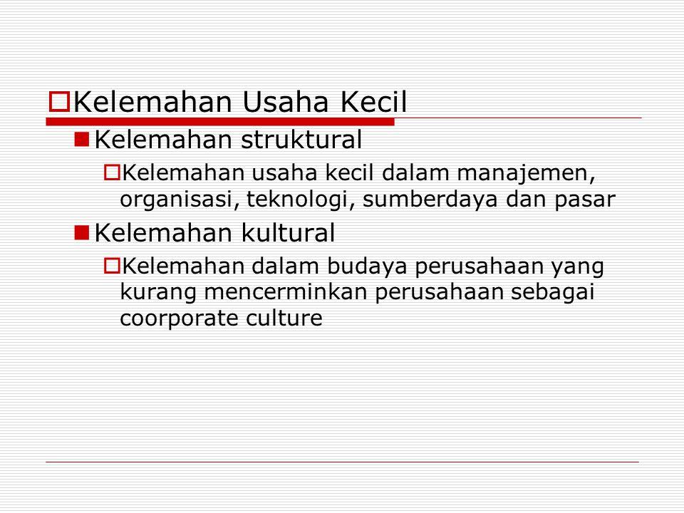  Kelemahan Usaha Kecil Kelemahan struktural  Kelemahan usaha kecil dalam manajemen, organisasi, teknologi, sumberdaya dan pasar Kelemahan kultural 