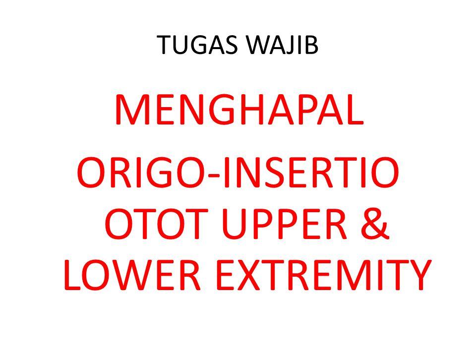 TUGAS WAJIB MENGHAPAL ORIGO-INSERTIO OTOT UPPER & LOWER EXTREMITY