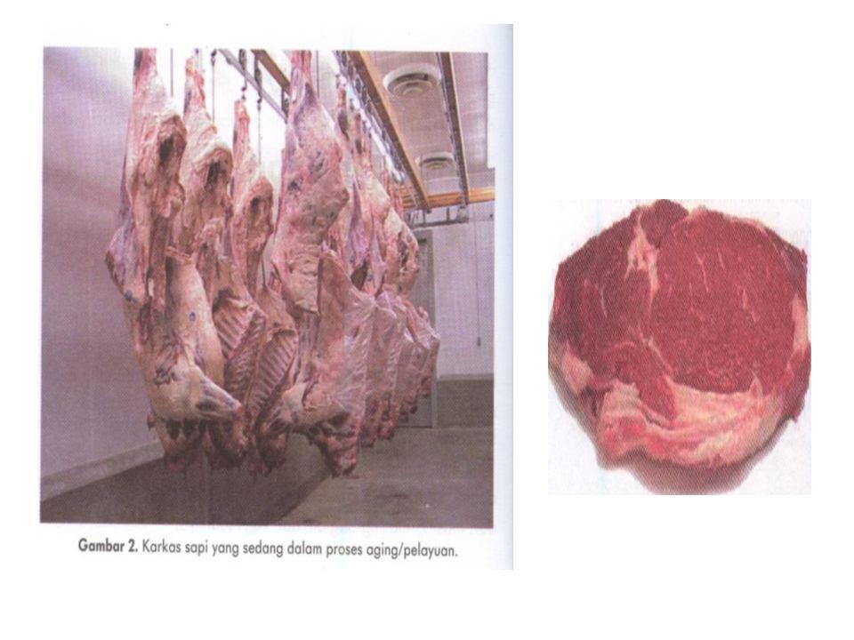 Komposisi Fisik Daging (3) Telah dikatakan bahwa otot digunakan sebagai penggerak dan sumber kekuatan.