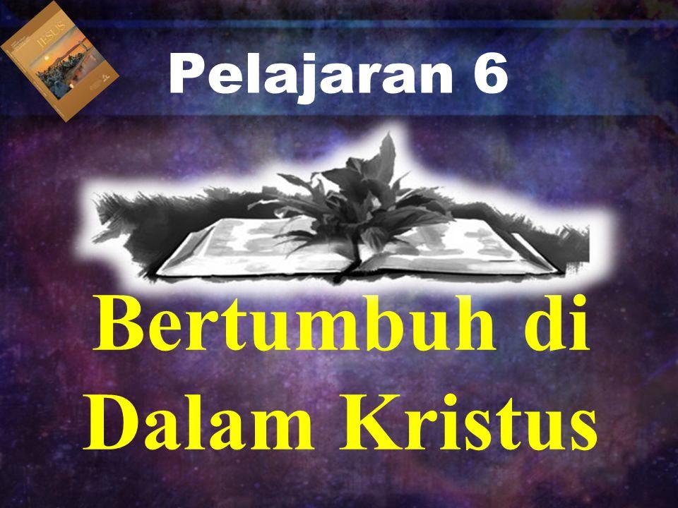 Pelajaran 6 Bertumbuh di Dalam Kristus