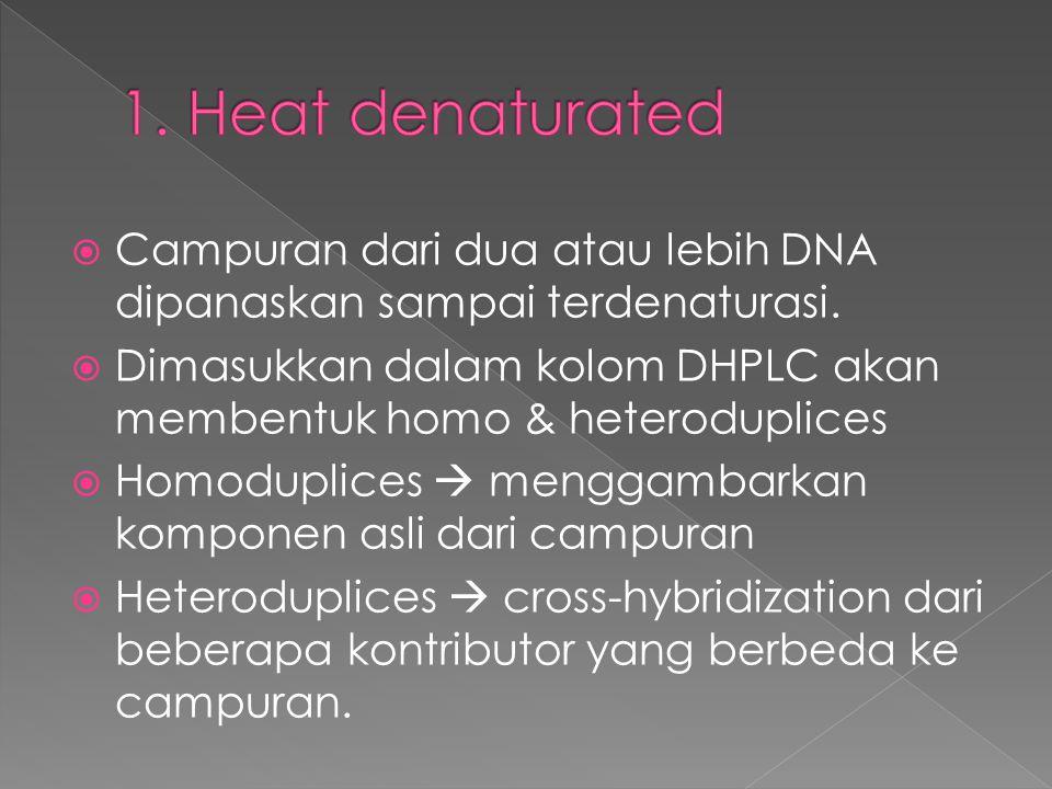  Campuran dari dua atau lebih DNA dipanaskan sampai terdenaturasi.  Dimasukkan dalam kolom DHPLC akan membentuk homo & heteroduplices  Homoduplices