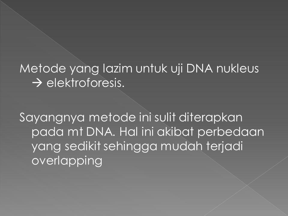 Metode yang lazim untuk uji DNA nukleus  elektroforesis. Sayangnya metode ini sulit diterapkan pada mt DNA. Hal ini akibat perbedaan yang sedikit seh
