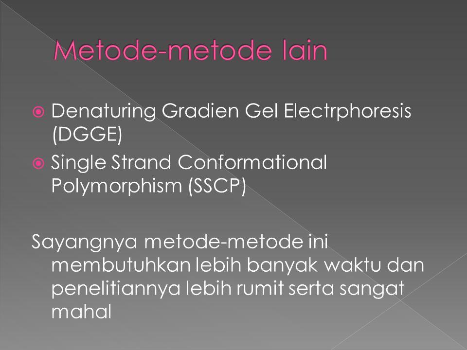  Denaturing Gradien Gel Electrphoresis (DGGE)  Single Strand Conformational Polymorphism (SSCP) Sayangnya metode-metode ini membutuhkan lebih banyak