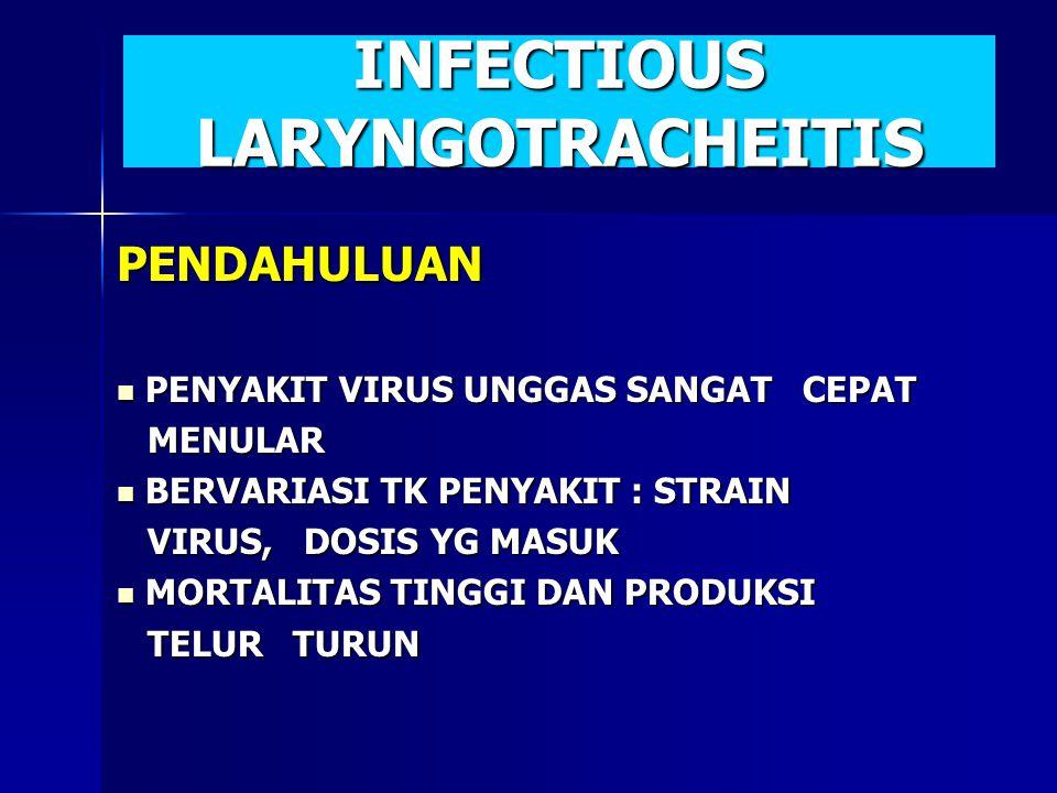 PENDAHULUAN PENYAKIT VIRUS UNGGAS SANGAT CEPAT PENYAKIT VIRUS UNGGAS SANGAT CEPAT MENULAR MENULAR BERVARIASI TK PENYAKIT : STRAIN BERVARIASI TK PENYAK