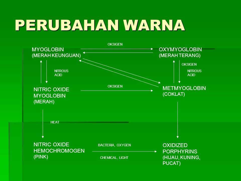 PERUBAHAN WARNA MYOGLOBIN (MERAH KEUNGUAN) OXYMYOGLOBIN (MERAH TERANG) METMYOGLOBIN (COKLAT) OXIDIZED PORPHYRINS (HIJAU, KUNING, PUCAT) NITRIC OXIDE H