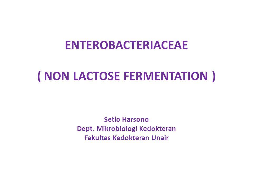 ENTEROBACTERIACEAE ( NON LACTOSE FERMENTATION ) Setio Harsono Dept. Mikrobiologi Kedokteran Fakultas Kedokteran Unair
