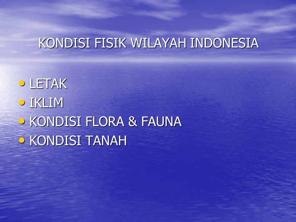 KONDISI FISIK WILAYAH INDONESIA MATERI PELAJARAN IPS UMUM