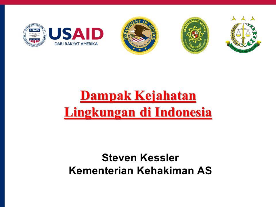 Steven Kessler Kementerian Kehakiman AS Dampak Kejahatan Lingkungan di Indonesia