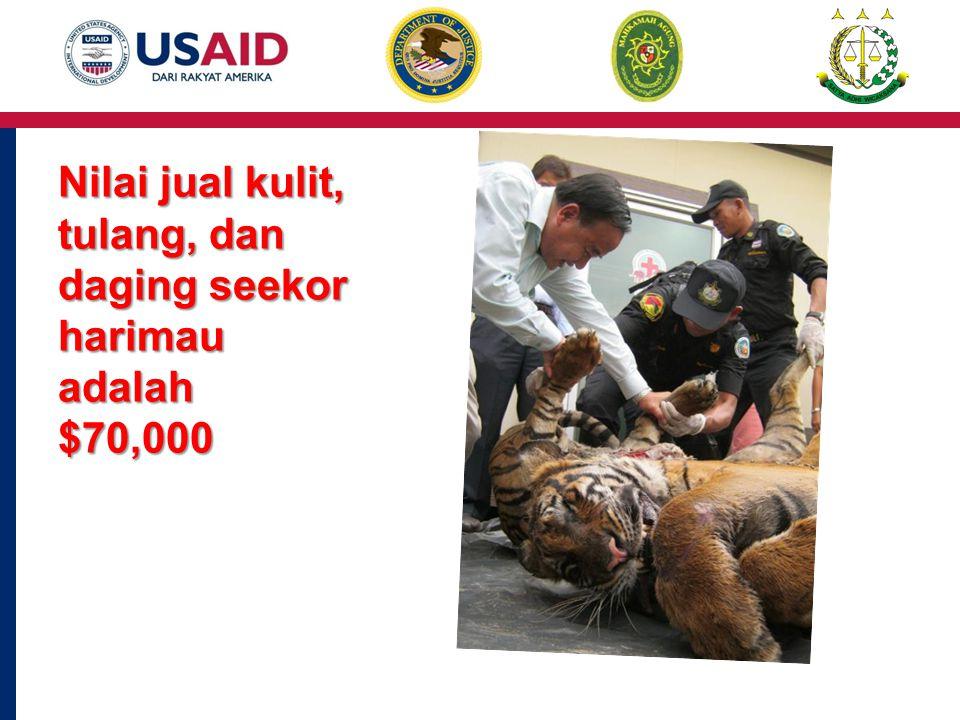 Nilai jual kulit, tulang, dan daging seekor harimau adalah $70,000