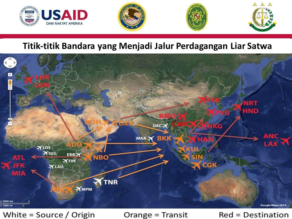 Titik-titik Bandara yang Menjadi Jalur Perdagangan Liar Satwa