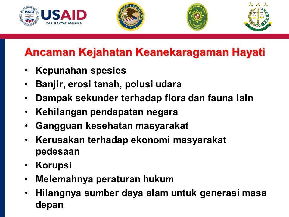 25 Produk Kayu Ilegal dari Asia Timur dan Pasifik ke seluruh Dunia